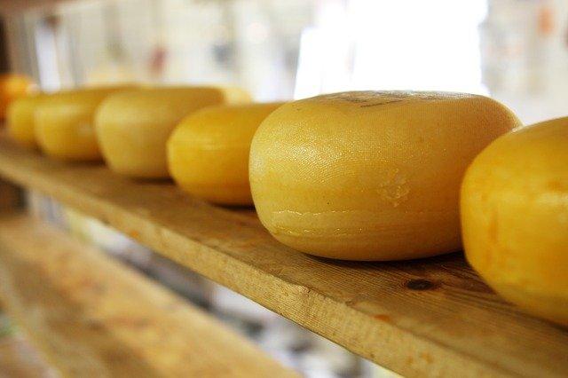 kruhový sýr